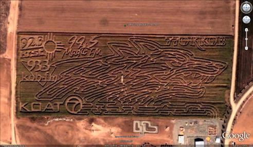 21 mazes: 1/4 Mile long wolf head