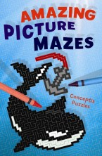 Amazing Picture Mazes